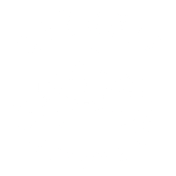 Detroit Motorcycle City